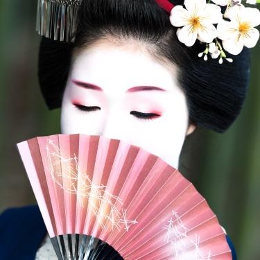 A Geisha's Tale | Fabrizio Bonifazi