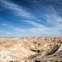 Palestina, 2014