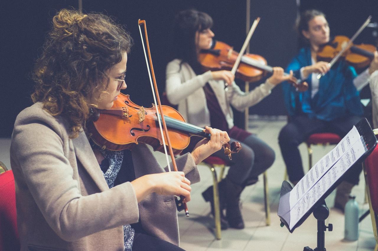 Concerto di musica classica - © Mariagrazia De Siena - mariagraziadesiena.com