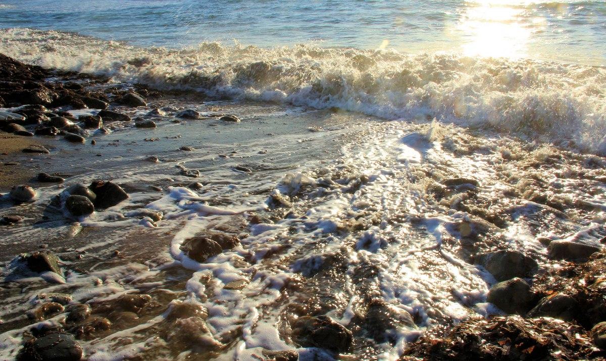 Capricci del mare