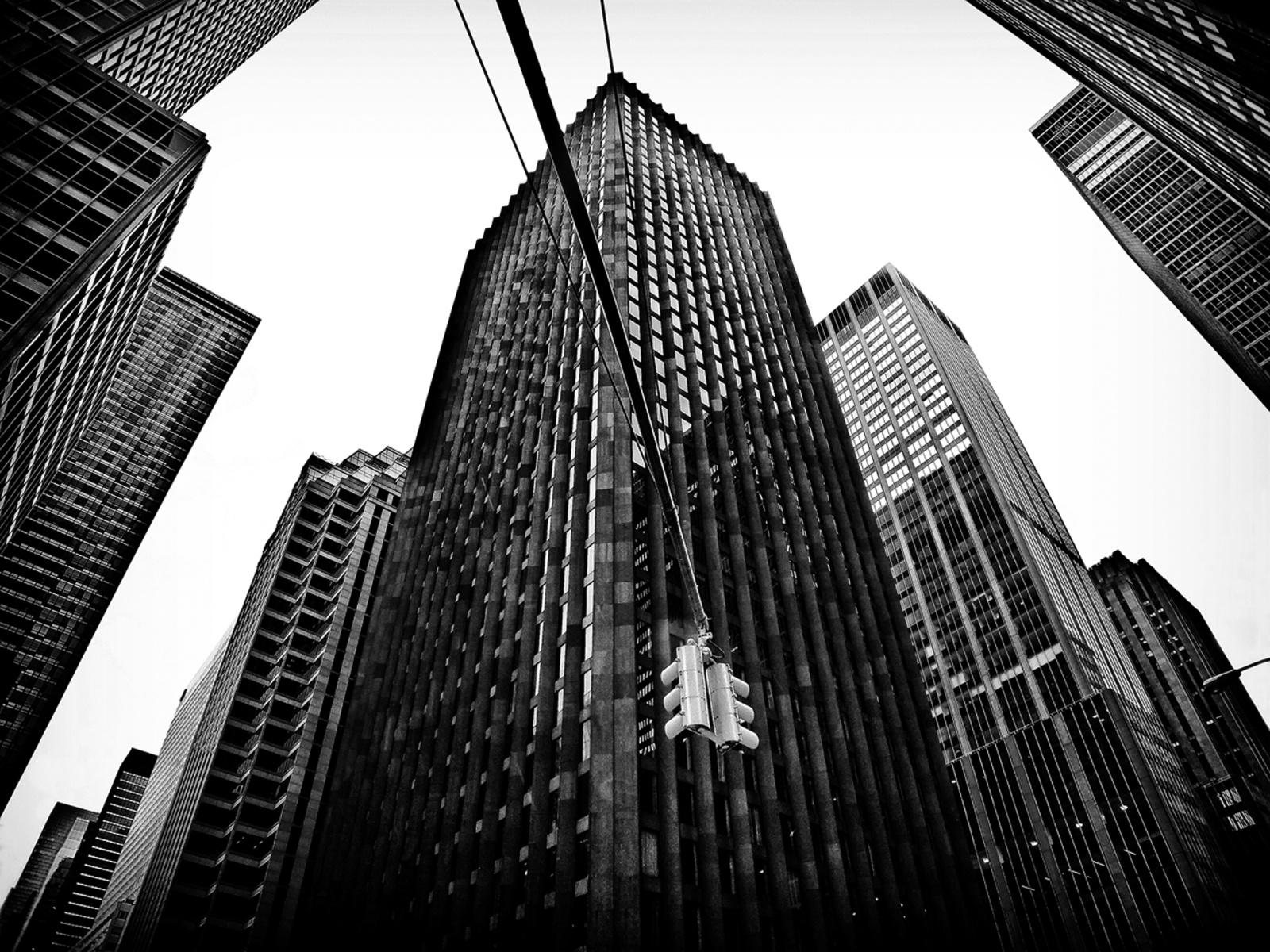 Caged Lives, New York 2012. © René Piras.