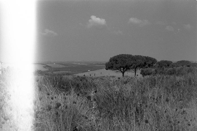 Campagna italiana, scansione da pellicola bianconero, Italia, 2012. © Anna Pizzoccaro.