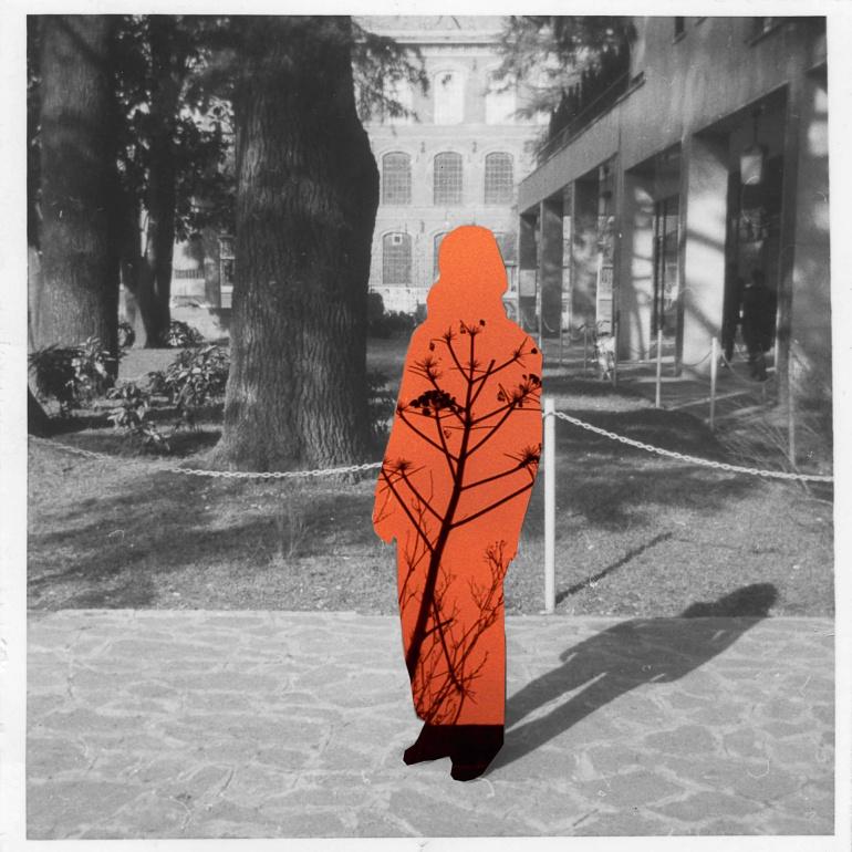 L'ombra di mia madre quando studiava al college negli Stati Uniti, collage, USA, ?. © Anna Pizzoccaro.